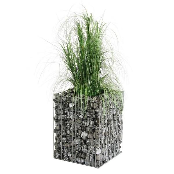 bellissa Gabionen Pflanzsäule 40x40x50 cm inkl. Bewässerungssystem und Substratbeutel